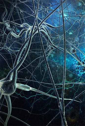 Journal of Neuroscience and Neurosurgery